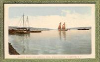 Postcard: Wellington Harbour, 1905