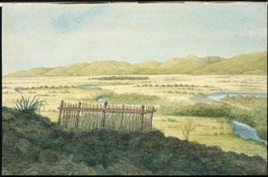 Wairau April 1851, Charles Gold