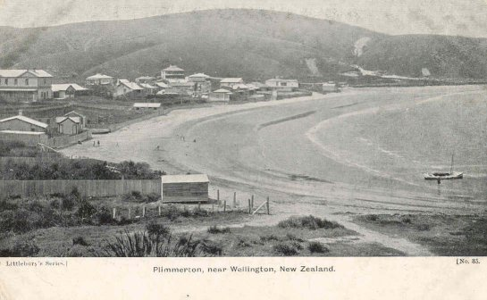 Postcard collection wellington city libraries for 291 the terrace wellington new zealand