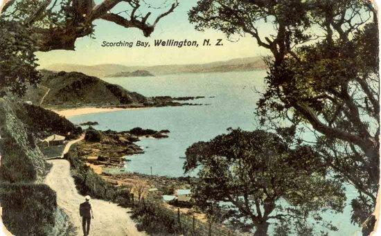 Scorching Bay, Wellington, N.Z..