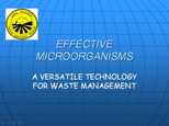 effective microorganisms presentation