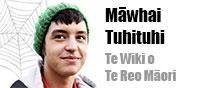 mawhai-carousel