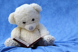 teddybear-book
